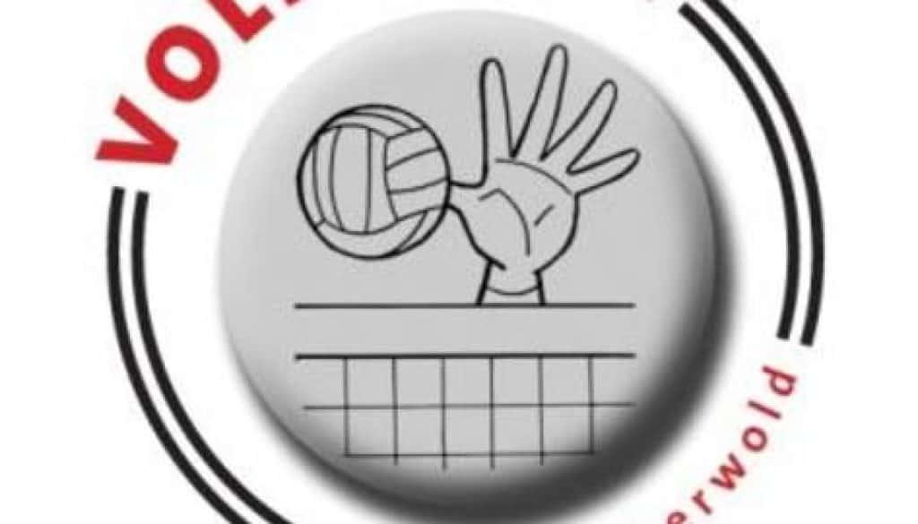 volleybal tijdelijk-page-001