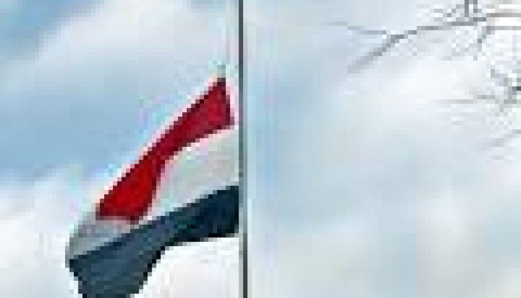 download vlag half stok