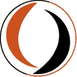 SV Steenwijkerwold logo