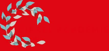 Logo Cirkel Academie
