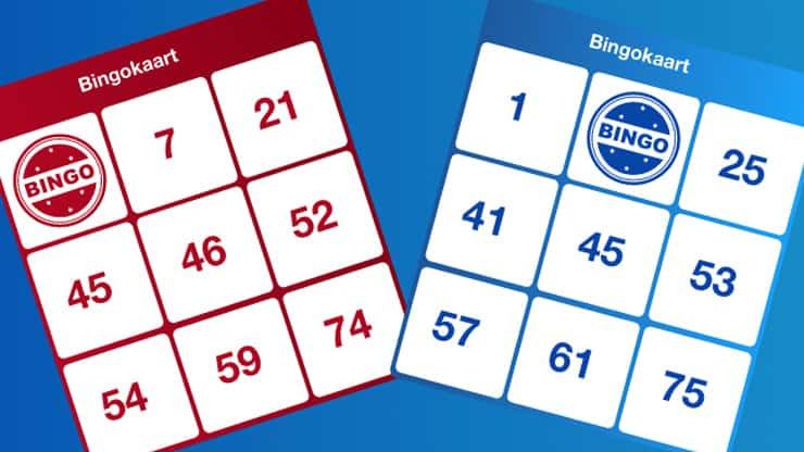Bingo-16-9