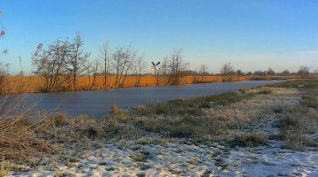ribbe winter molen-1
