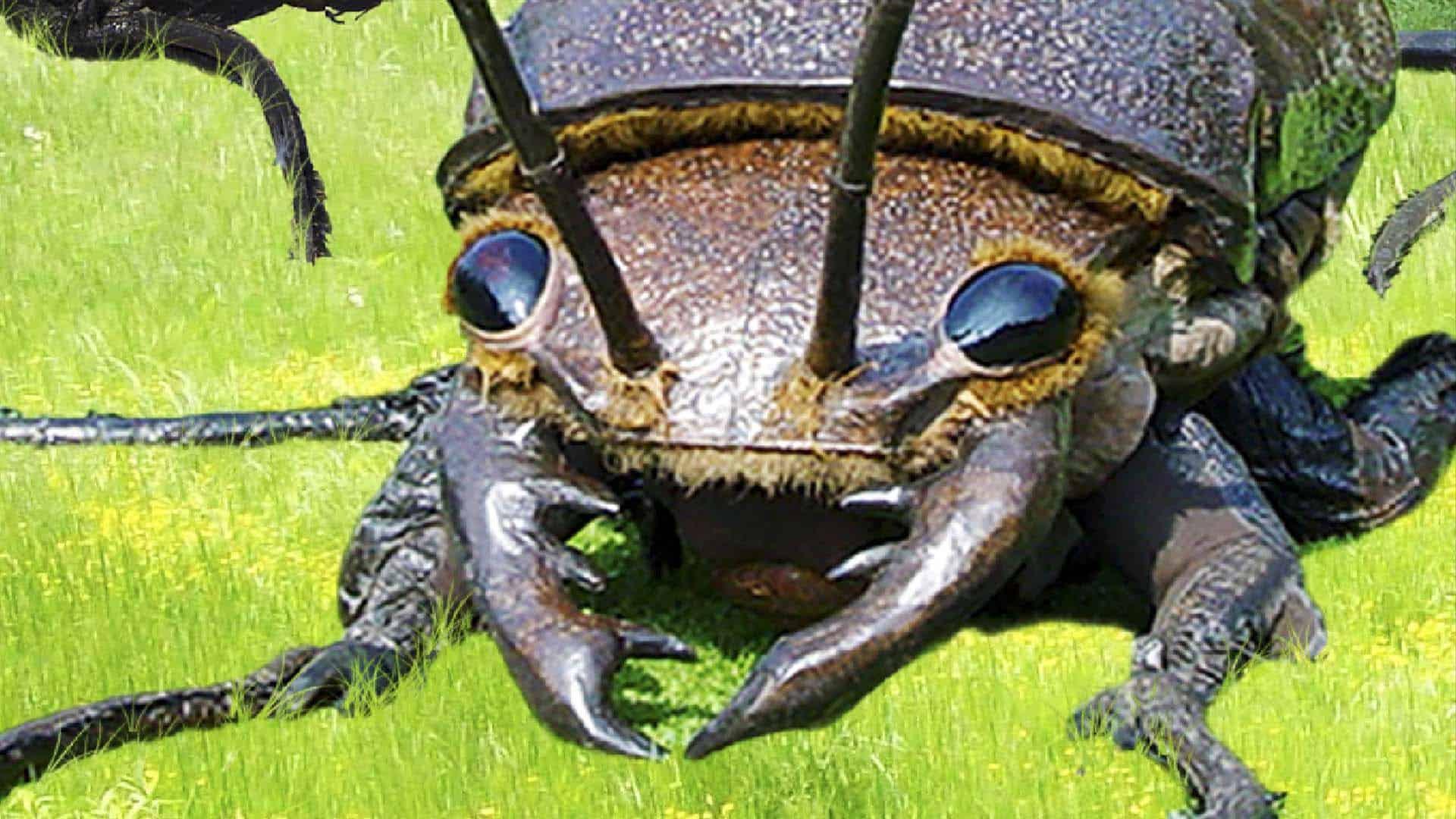 big bugs foto