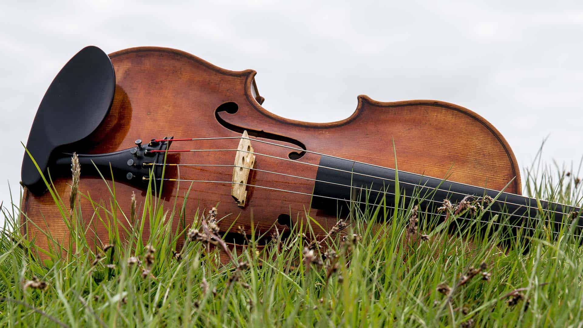 muziek in de natuur