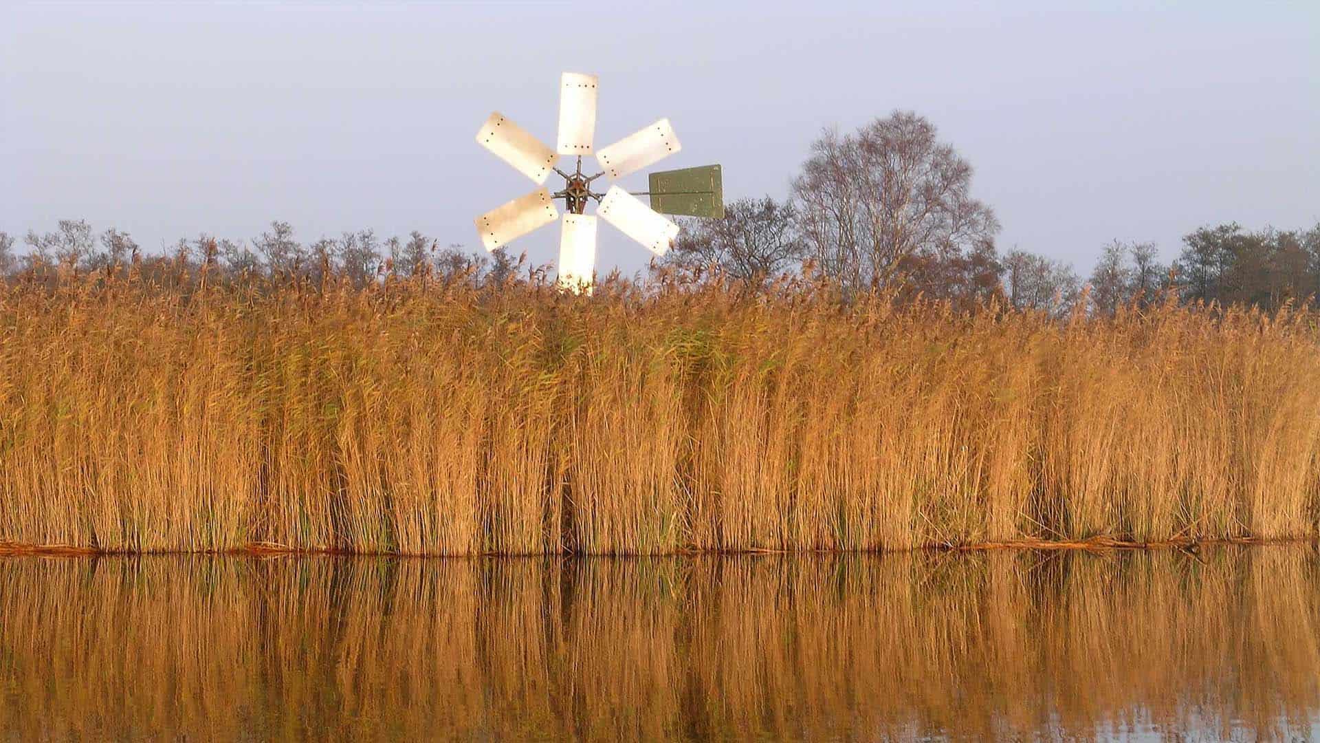 NMRG31217 herfstbeeld de wieden foto Natuurmonumenten Ronald Messemaker